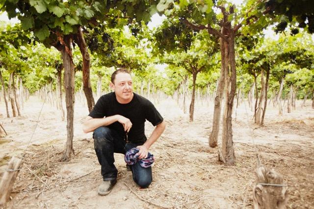 Brian Ravitsky, Brazos Wine Imports