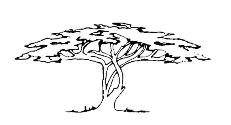Ann's Tree: African American Art & Books