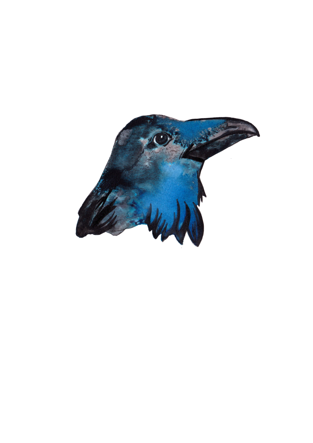 raven2.png