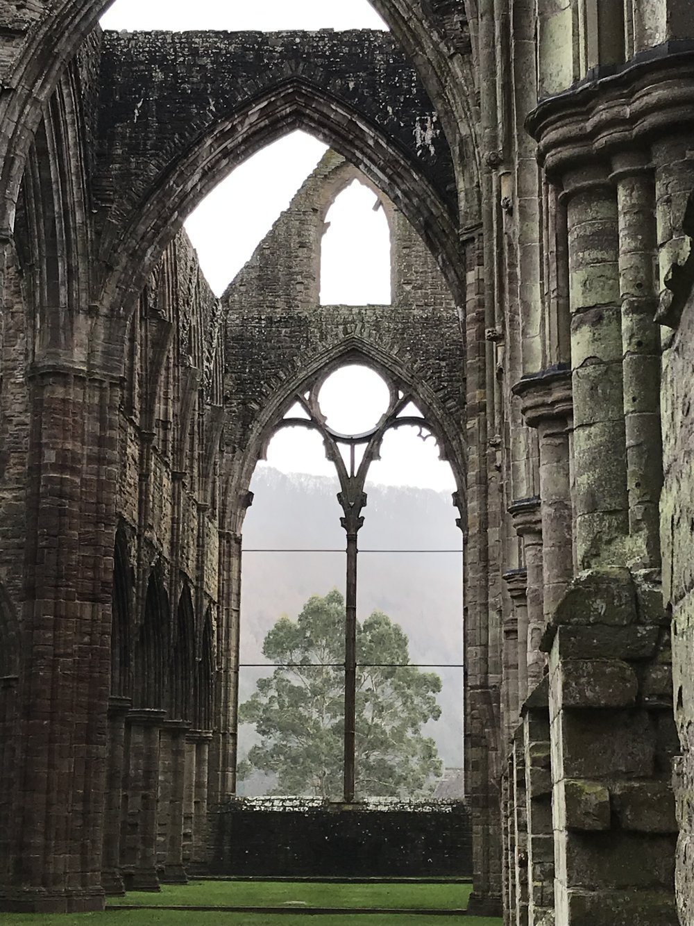 Tintern Abbey, with nature stealing the show