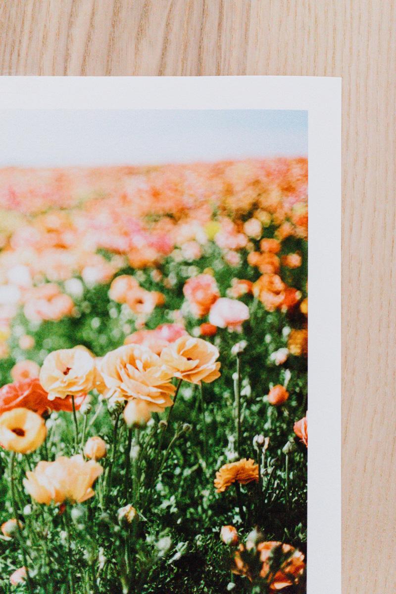 Unframed print_Anna Reynal Photography-2.jpg