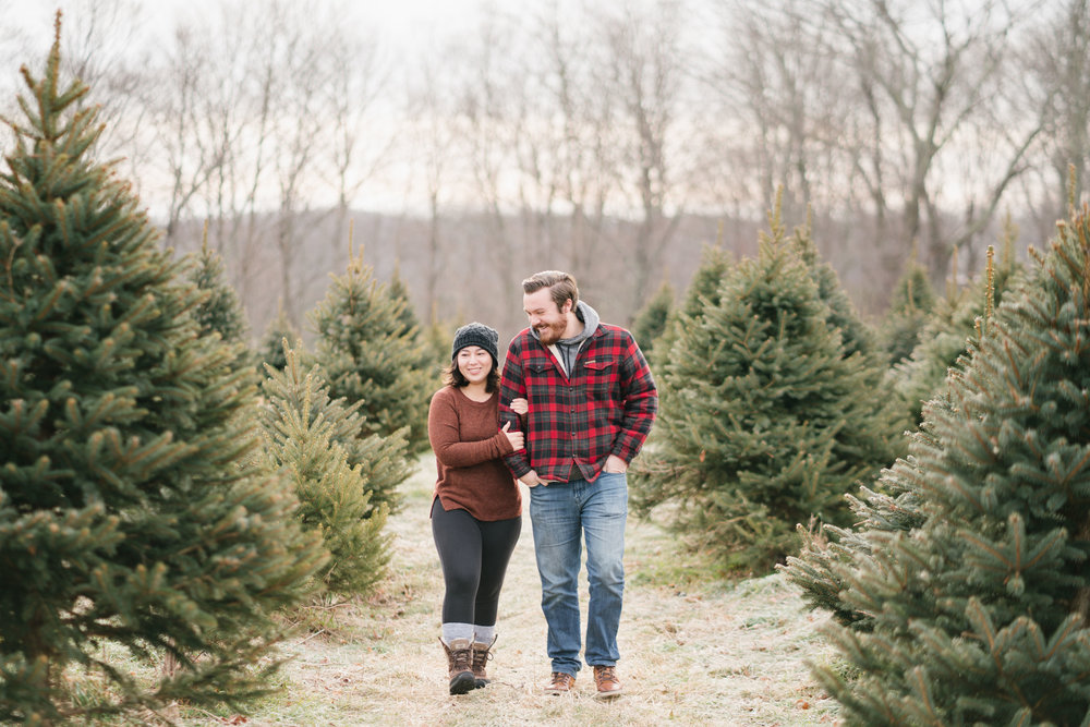 Tree farm engagement | maple row farm