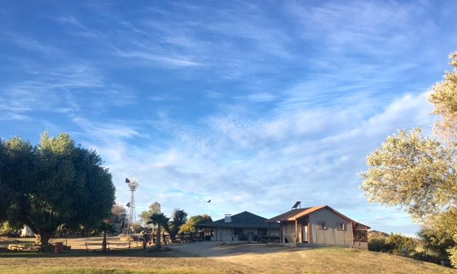 Rancho Coyote