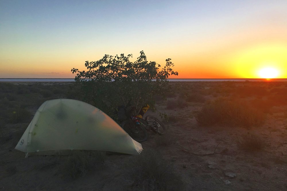 Sunset on the salt flats. Hiding behind a solitary tree