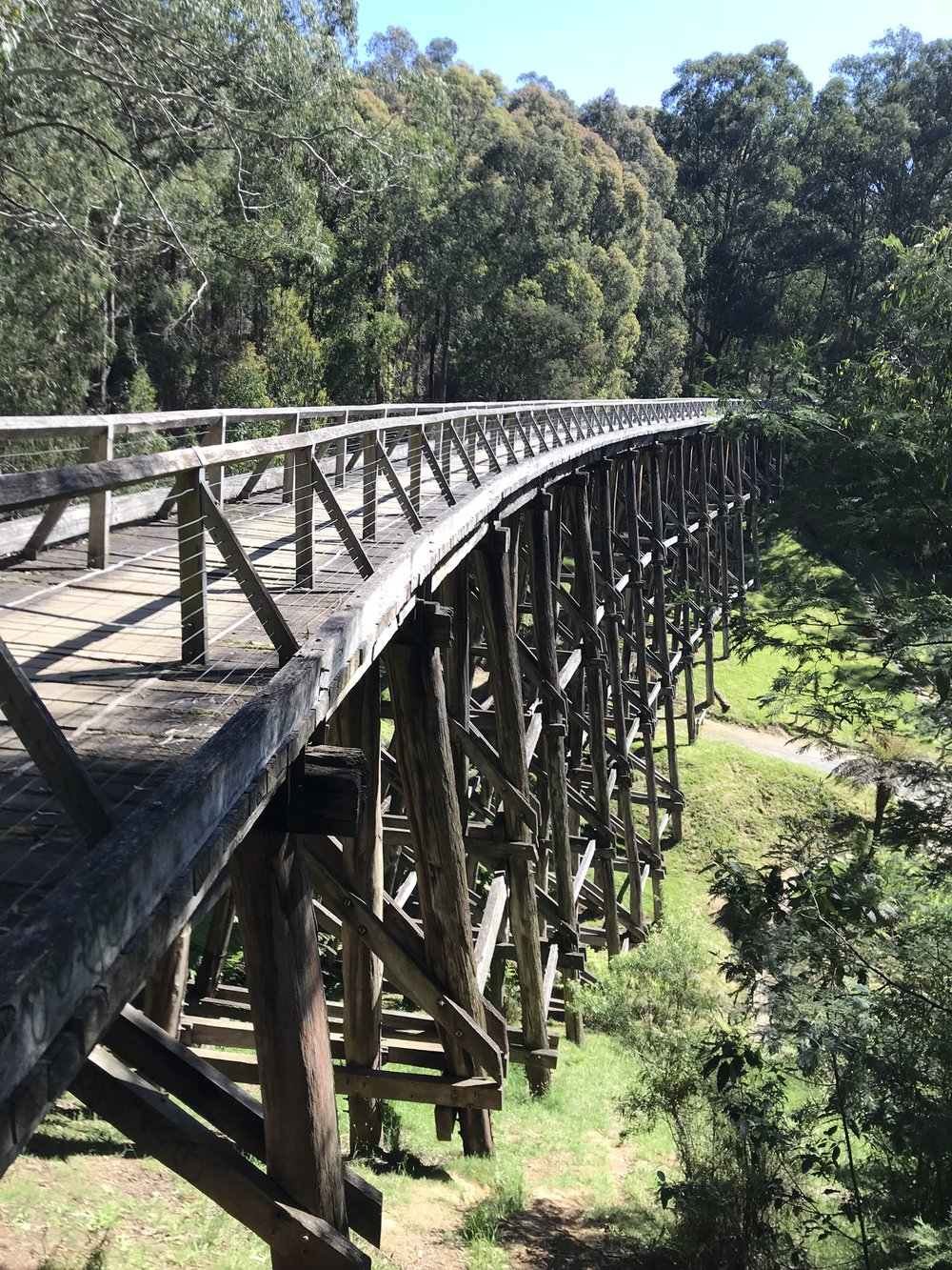 Noojee Trestle Bridge Rail Trail, Gippsland