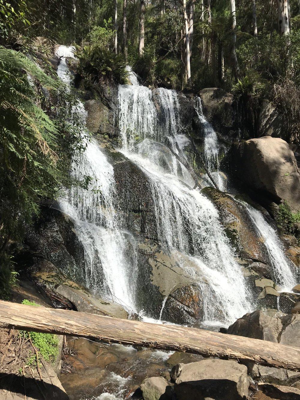 Toorongo Falls, Gippsland