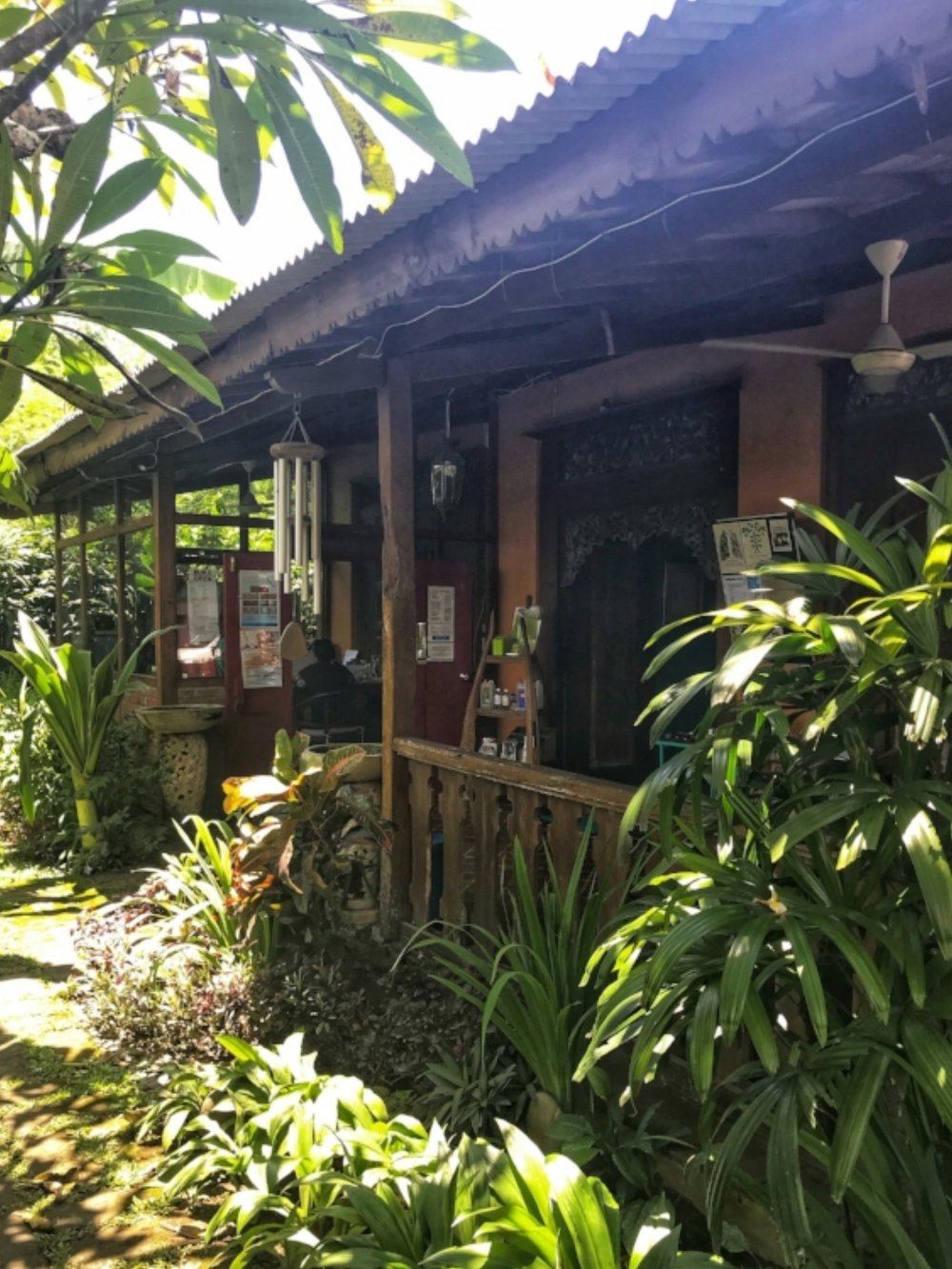 Bali Healing Centre Theta Healing Traditional Chinese Medicine Holistic