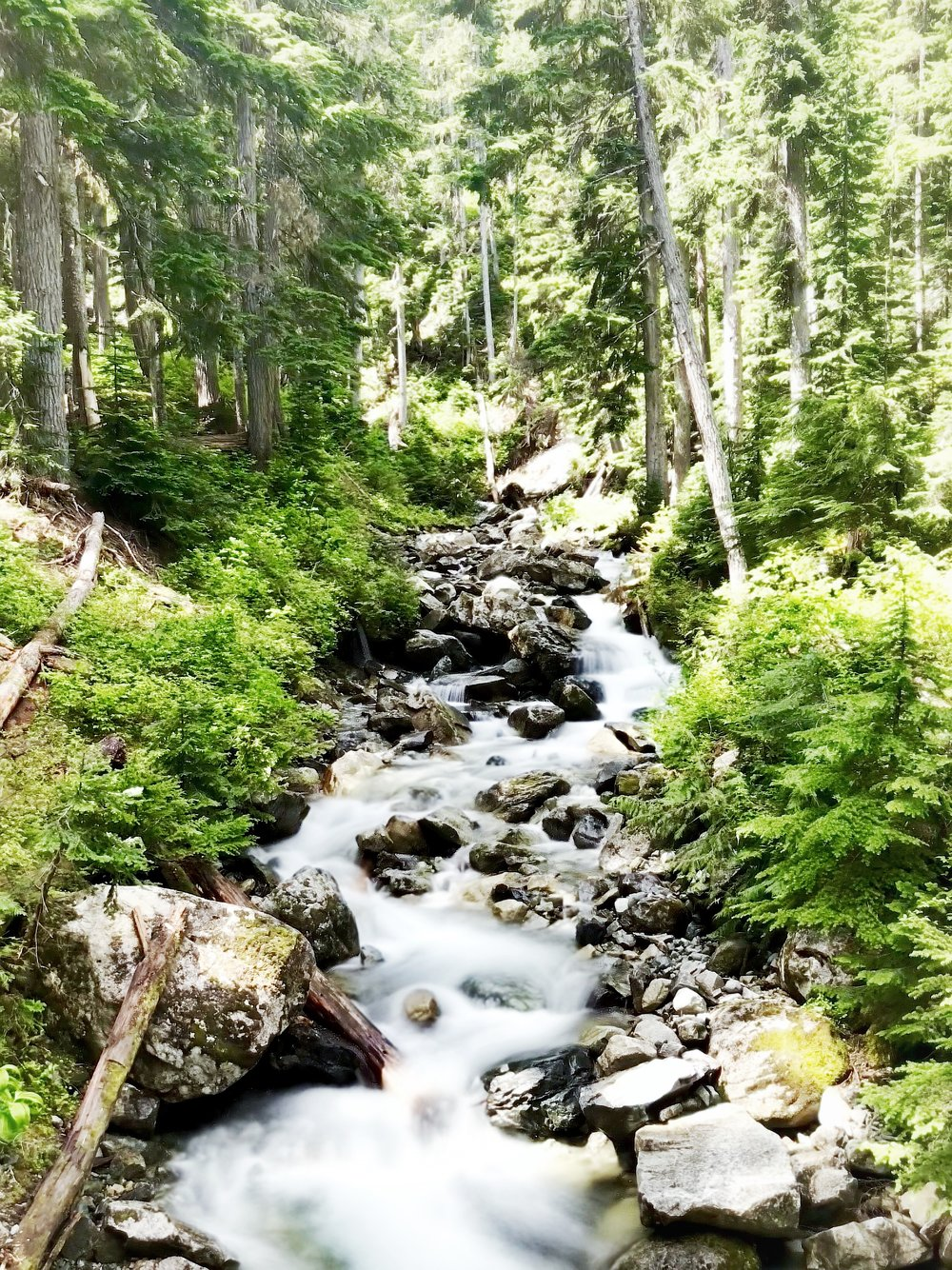 Beautiful creek on Rainbow Lake Hike