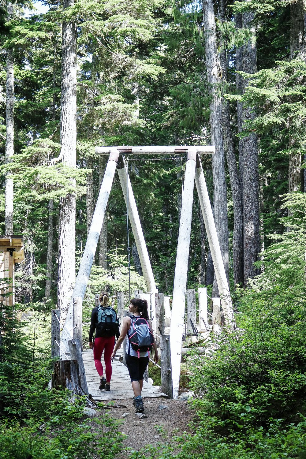 Rainbow Lake Hike bridge