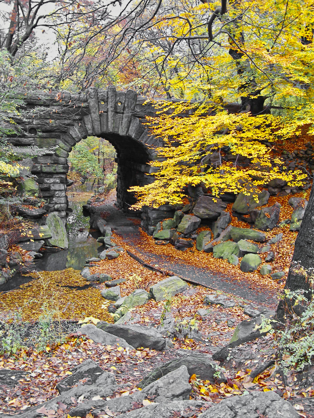Golden Bridge-Central Park-New York-wmlamontPB150234.jpg
