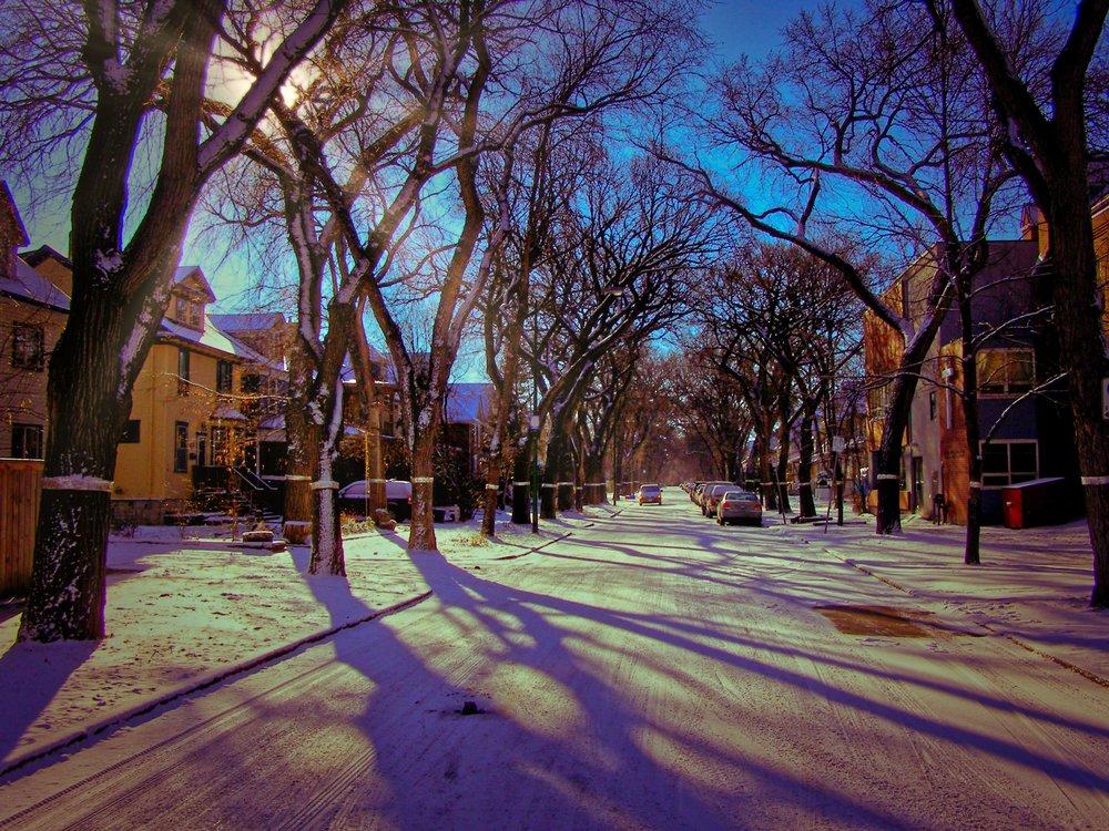 Winter Sun, Winnipeg [2006]