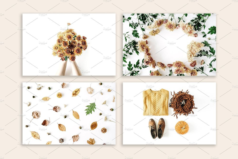 autumn stock photos