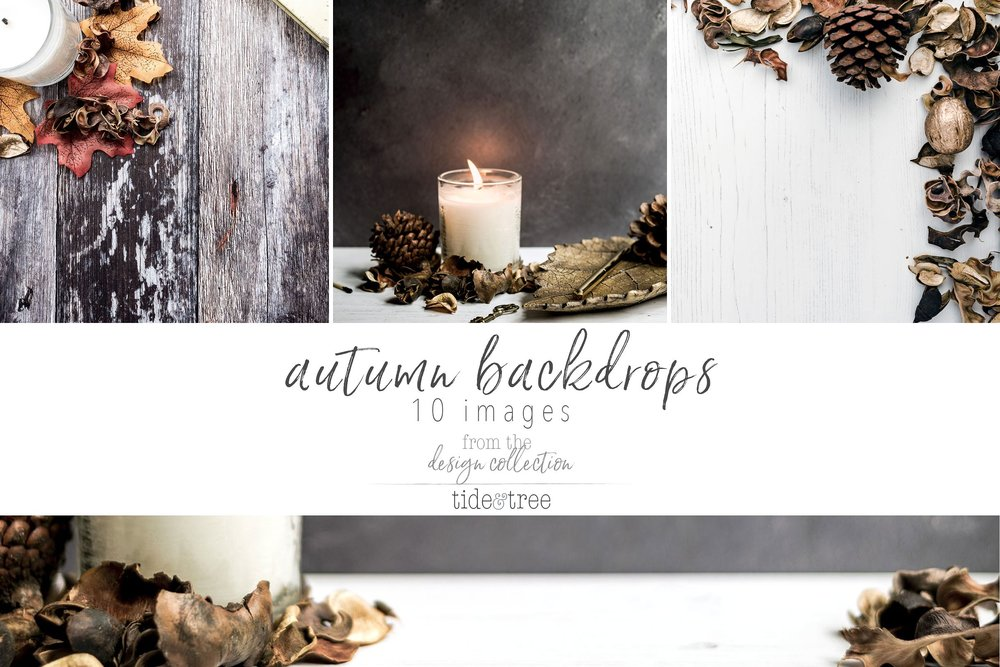 fall stock photos