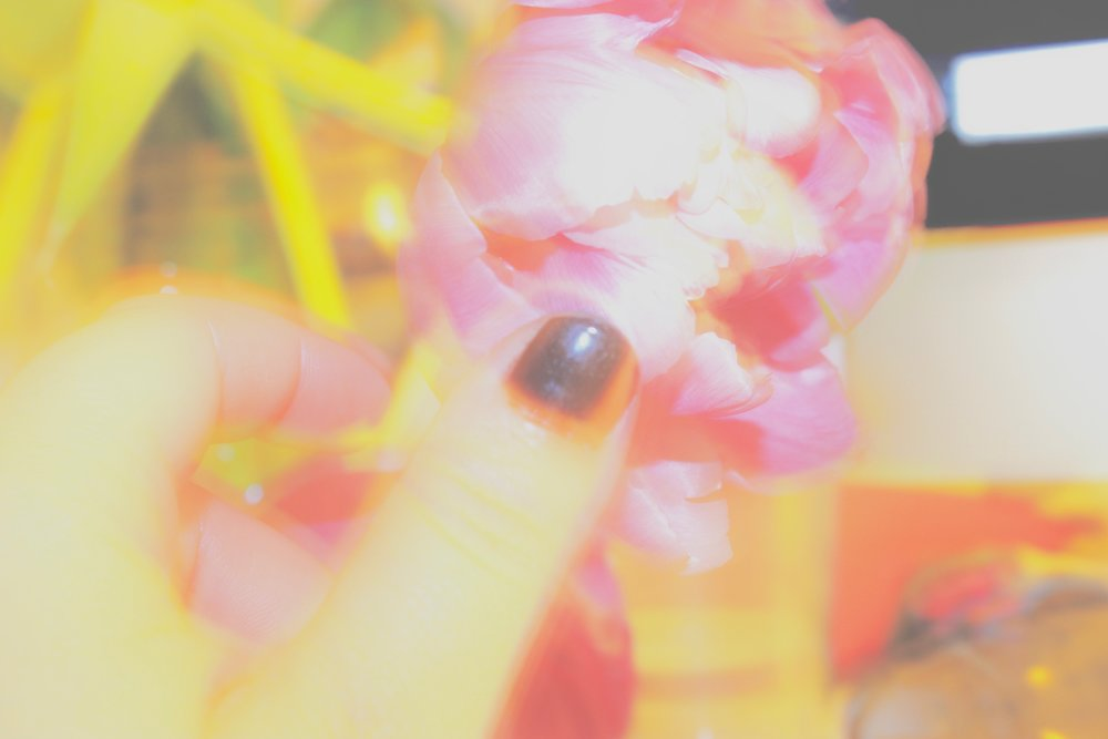 """""""Dark Flower"""" — Joeli Schwartz"""
