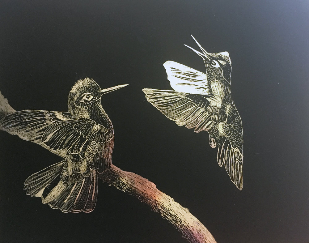 """Humming Birds"" - Kallie Stevens"