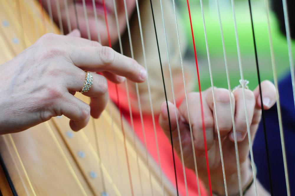 Elegance Harp and Flute 2011-18.jpg