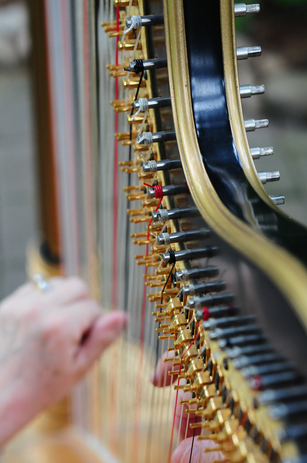 Elegance Harp and Flute 2011-22.jpg