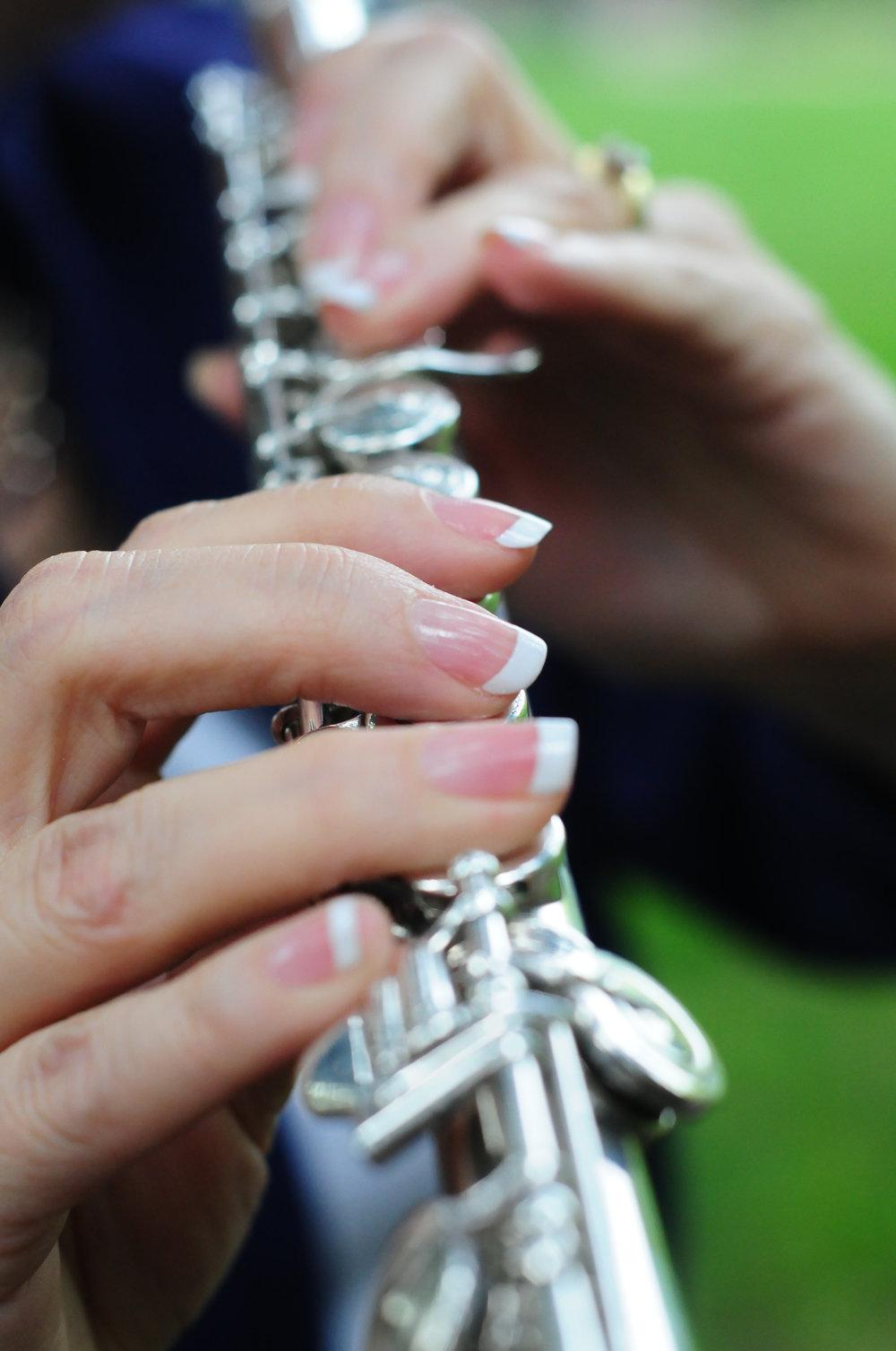 Elegance Harp and Flute 2011-23.jpg