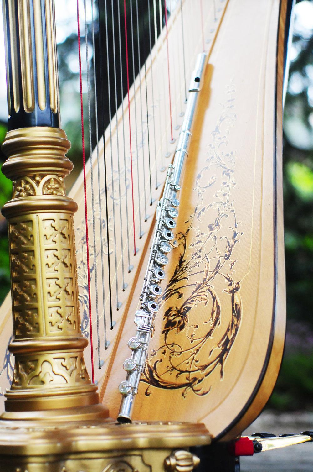 Elegance Harp and Flute 2011-24.jpg