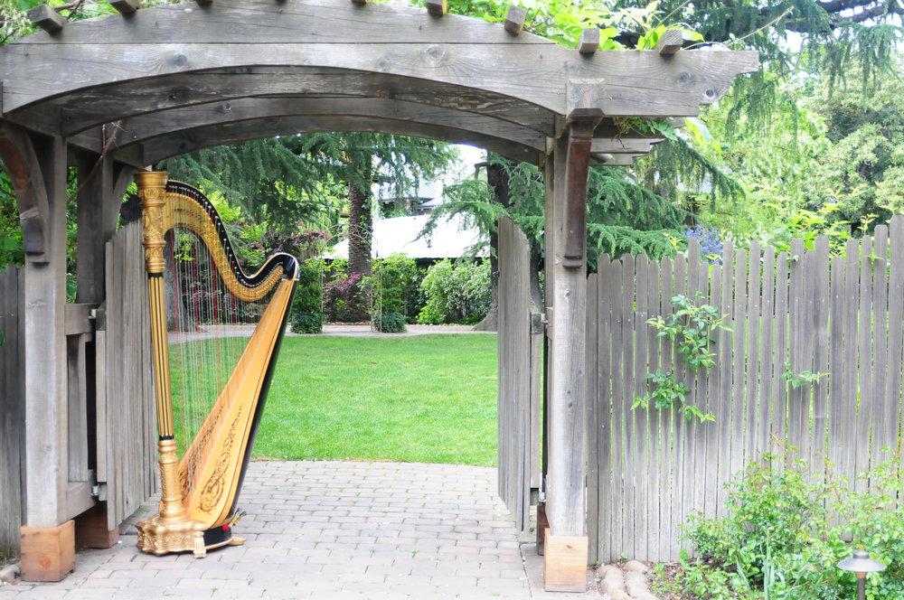 Elegance Harp and Flute 2011-29.jpg
