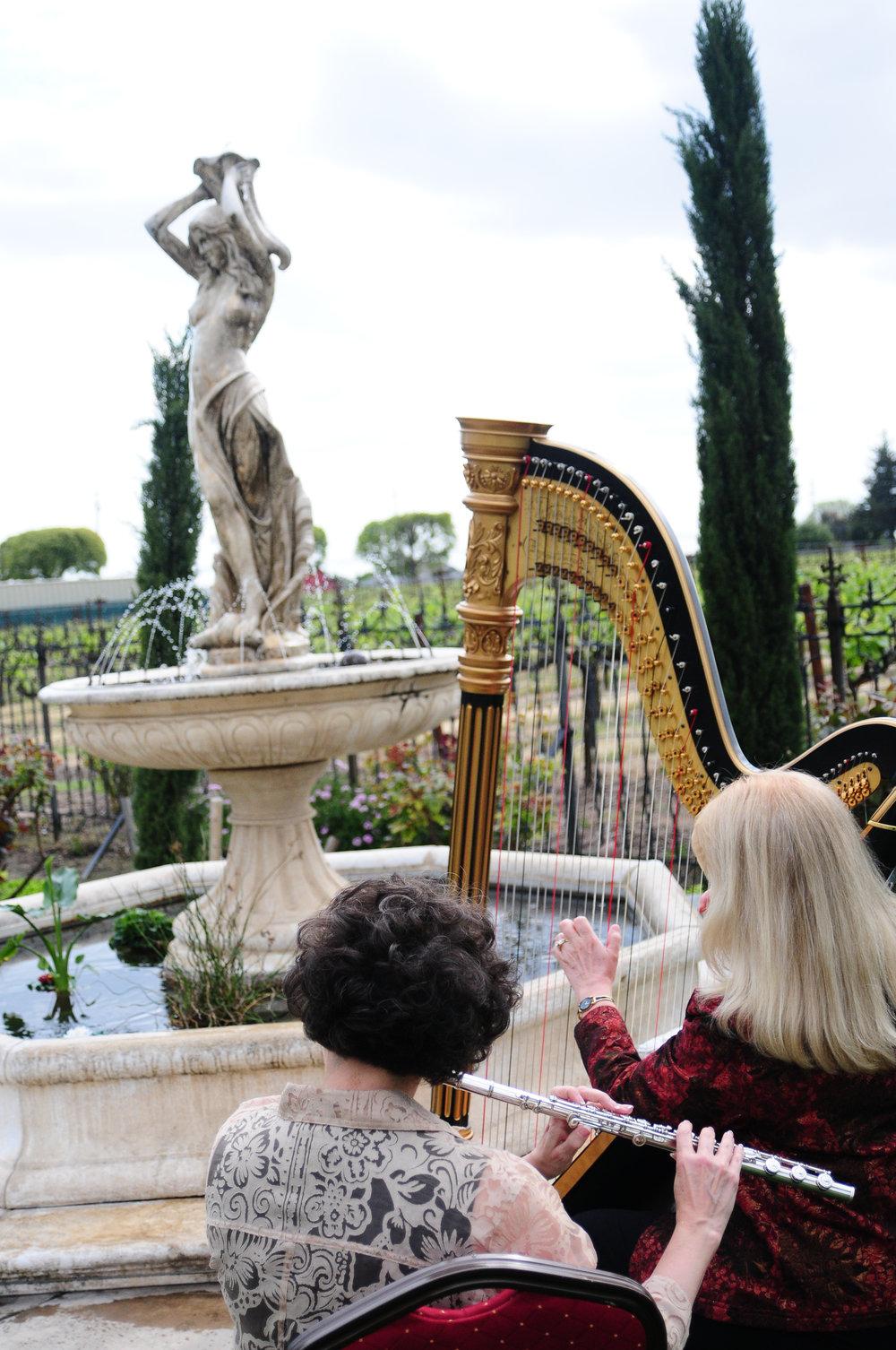 Elegance Harp and Flute 2011-31.jpg