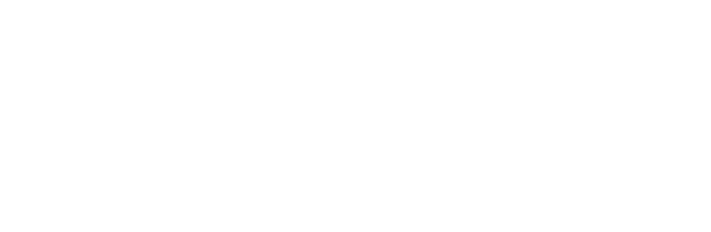 Zimmerei-Stoib-Logo-Master-weiss.png