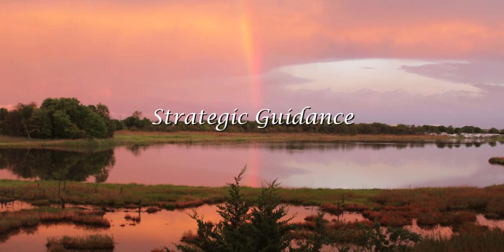 Strategic-Guidance.png