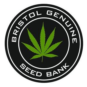 Bristol-seed-bank.png