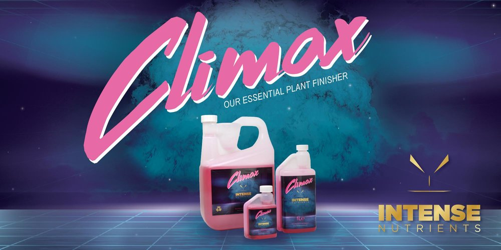 Climax-web-banner.jpg
