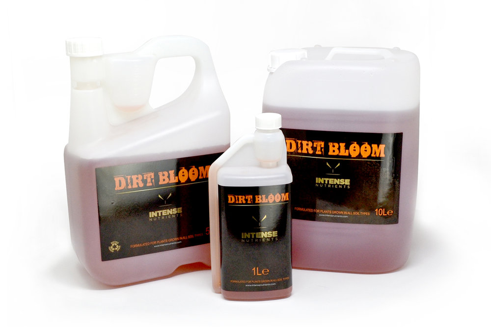 Dirt-bloom-group-web.jpg