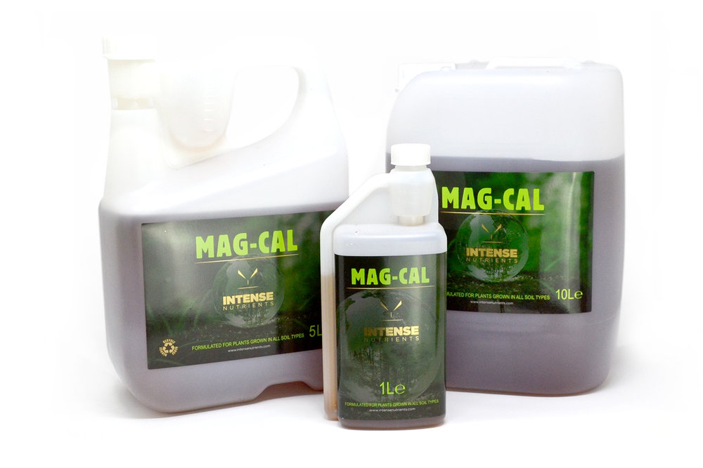 Mag-Cal-group-web.jpg