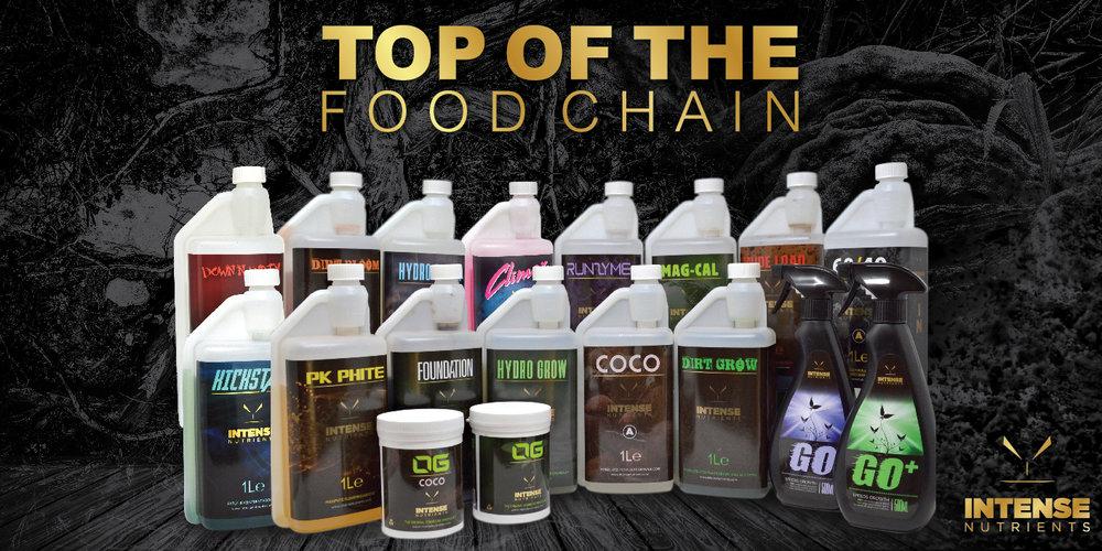 200x100cm-Top-of-the-food-01.jpg