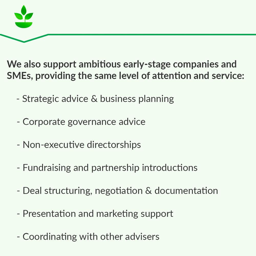 SMEs Text Block Green.jpg