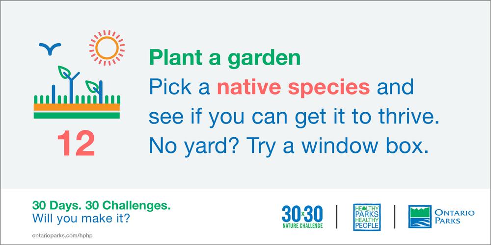 HPHP3030_shareables_parks_Planting garden.png