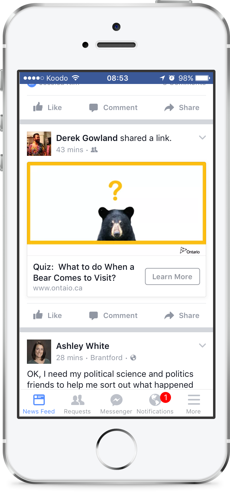 "Facebook ad to a ""choose your own adventure"" type quiz describing how to react to different bear encounters"