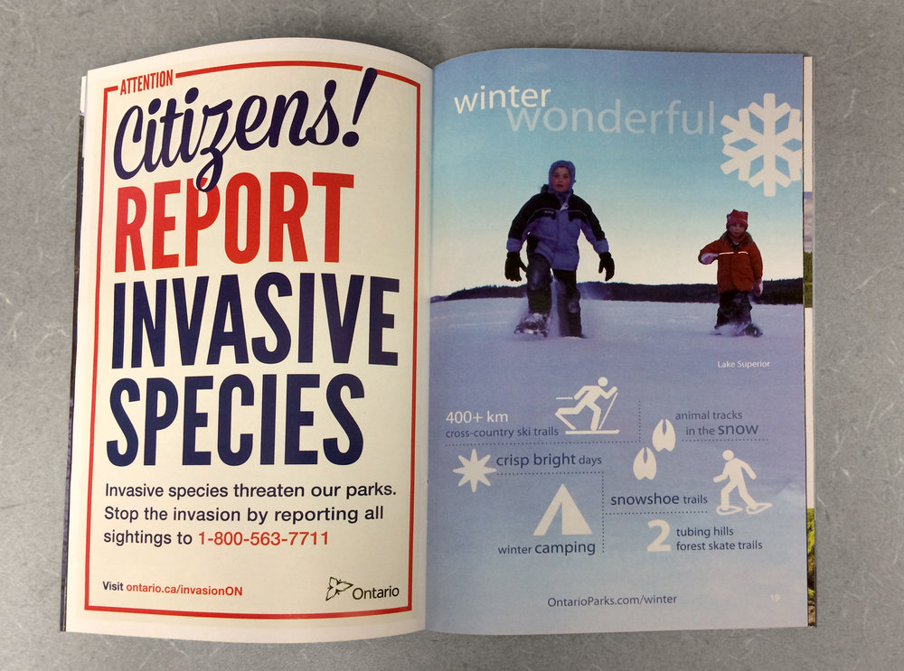 Bold type treatment stands out as a full page ad in the Ontario Parks Guide