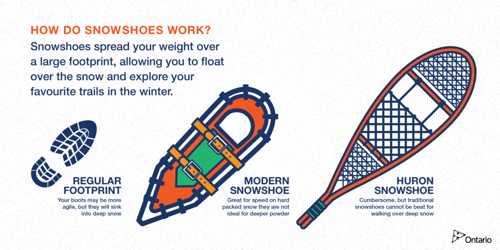 WA_snowshoes-01.png