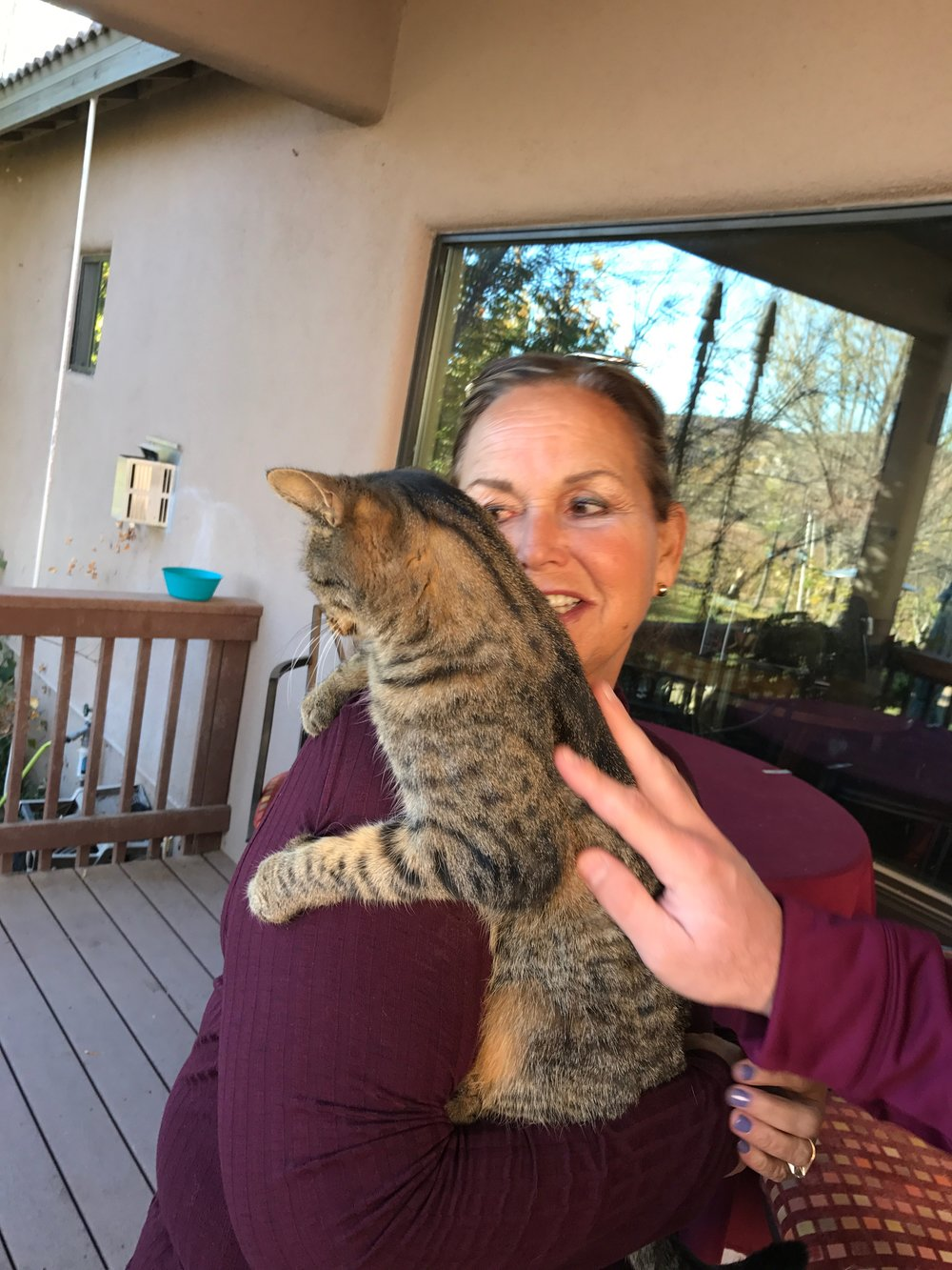 Barbara Predmore Owner with one of her rescue cats
