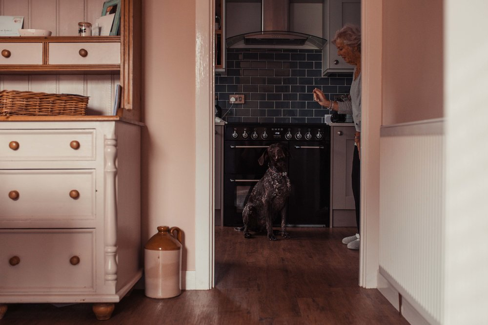 Mother of the bride feeds the dog a treat in the kitchen