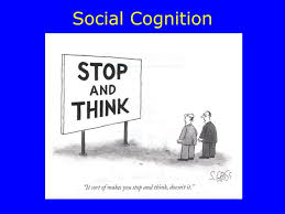Meta-cognition.jpg