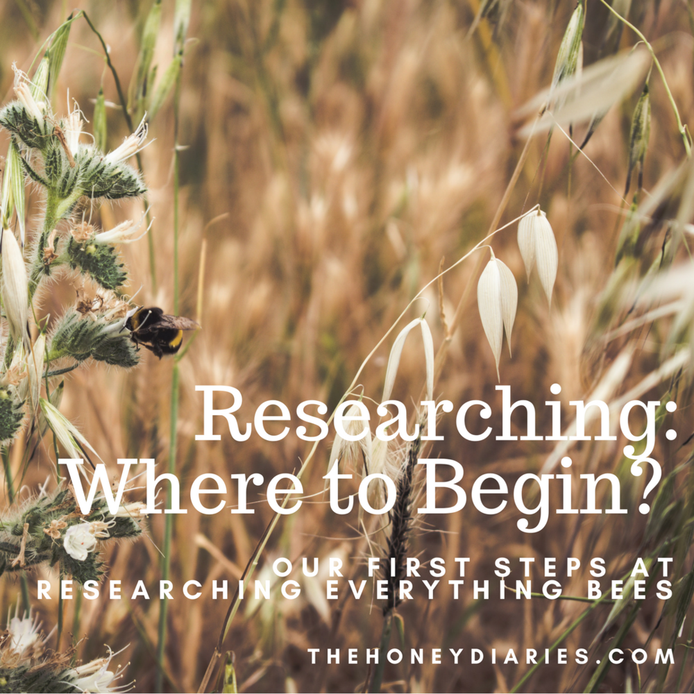 TheHoneyDiaries/Researching:WheretoBegin?.png