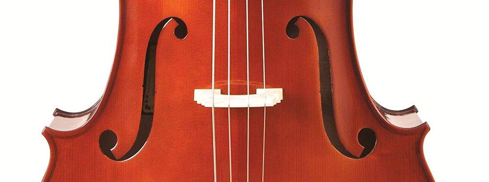cello_wide.jpg