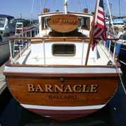 Barnacle