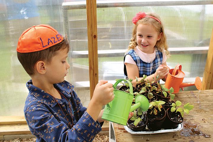 gardening IMG_1409.jpg