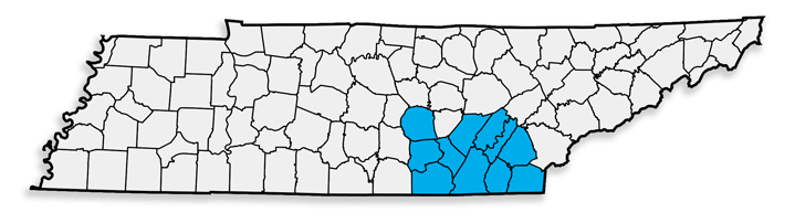 CHA-FTZ-Tennessee.png