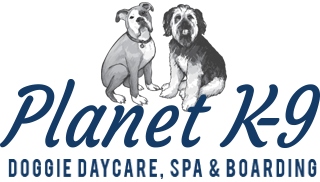 Doggie Daycare — Planet K-9