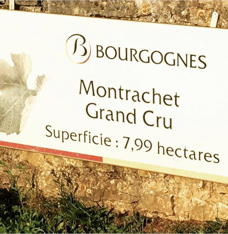 Burgundy_montrachet.jpg