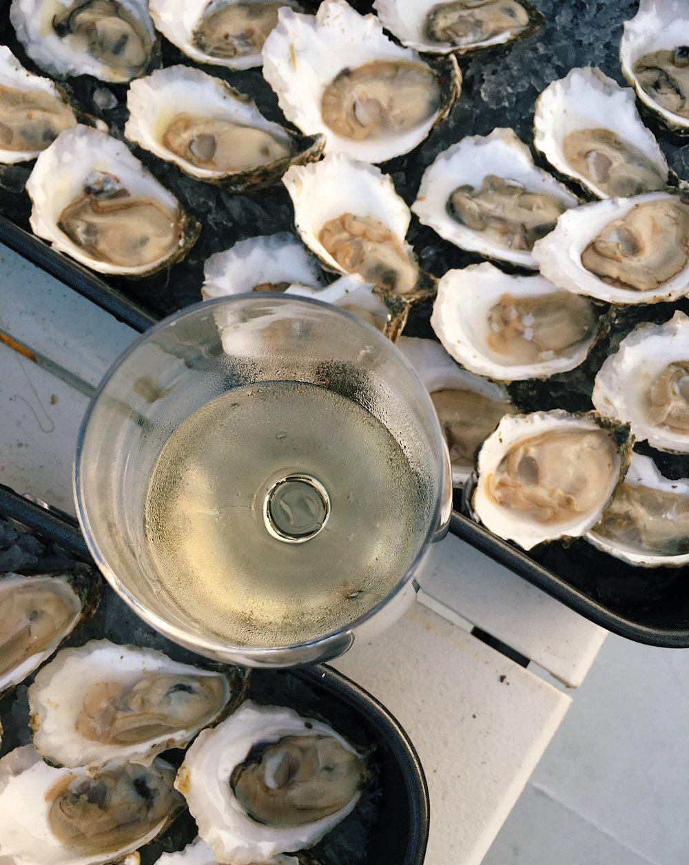 Wine_Wise_Sail_Oysters_portland_maine_2.jpg