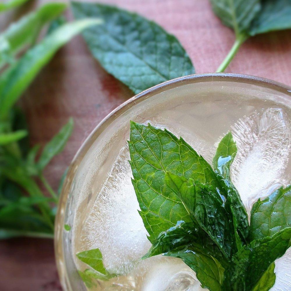 gin cocktail.JPG