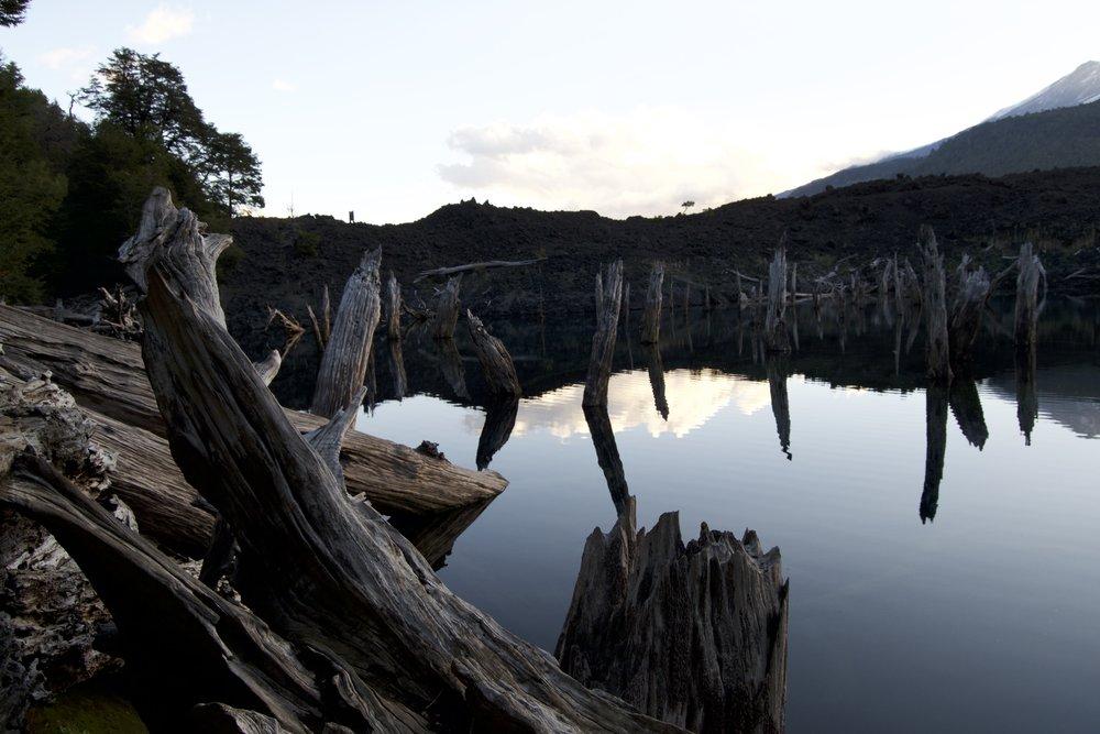Conguillio National Park with Samadhi Eco Resort Chile